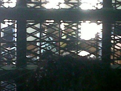 This is what Fayza Aboul Naga looks like from inside a cage.